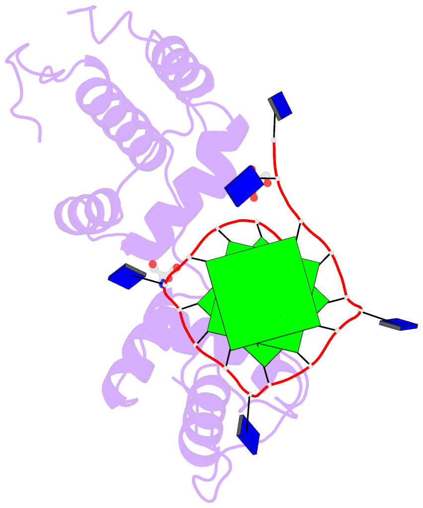 DSSR-PyMOL schematic for PDB entry 6ldm